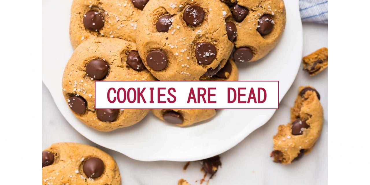 Čaká nás život bez cookies?